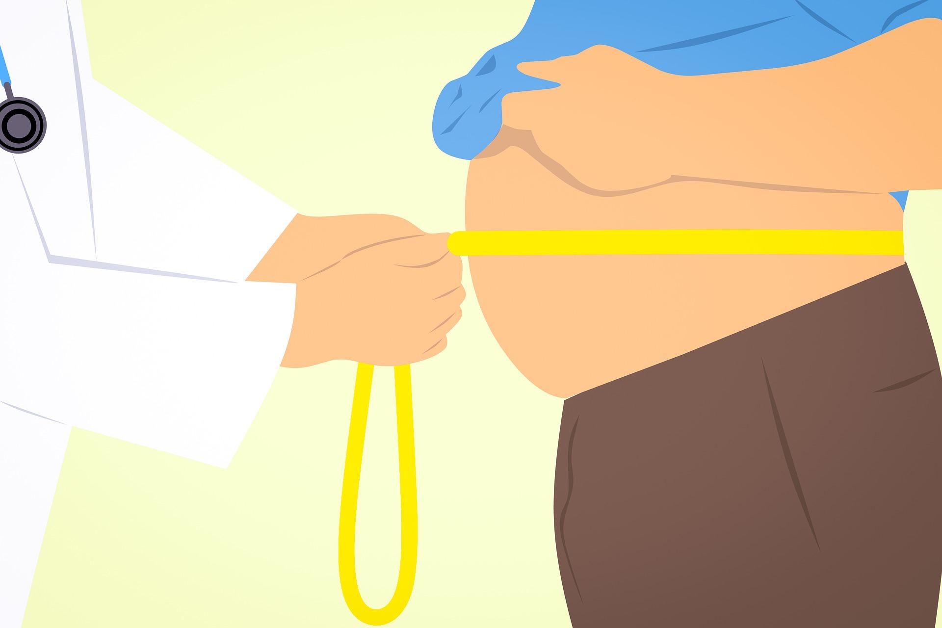 お腹,脂肪,腹筋,減らす